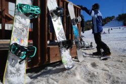 snowboards 250