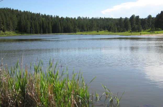 Roubaix Lake 623