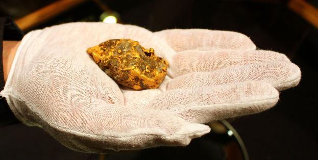 The Icebox Gold Nugget was unveiled recently at Rapid City's Journey Museum in the Black Hills of South Dakota.