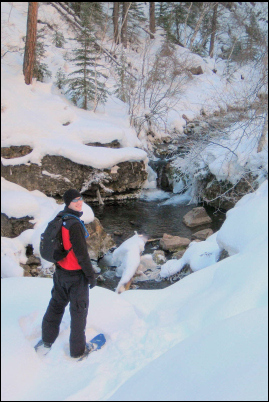 All along Iron Creek, there are small pools with beautiful ice formations.