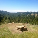 serenity-trail-3_Black-Hills_Wyoming