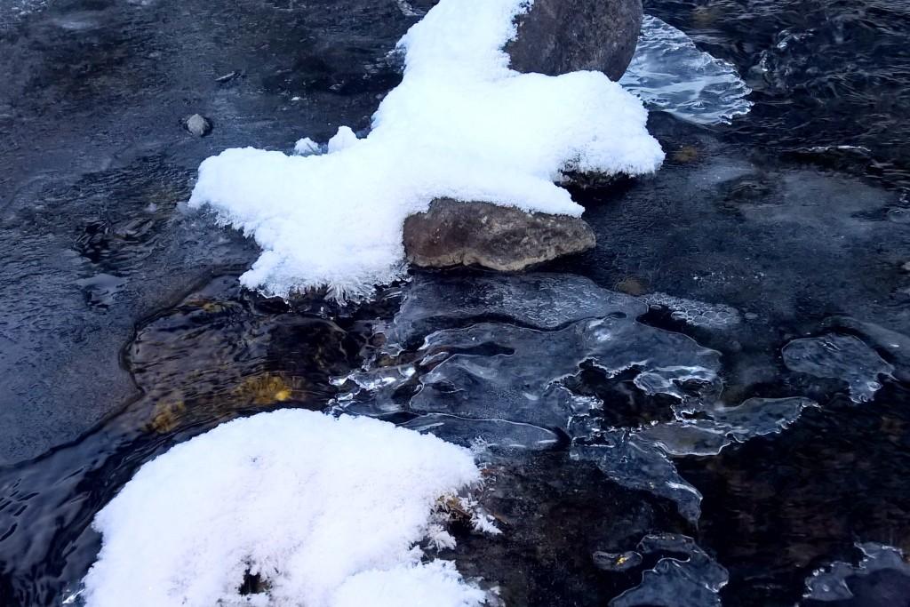 Grace Coolidge trail 6