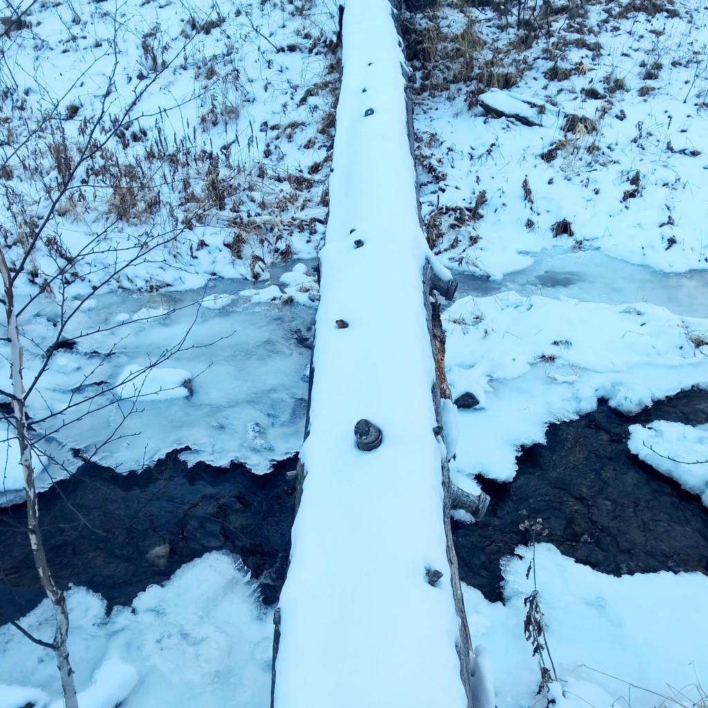 Grace coolidge trail 3