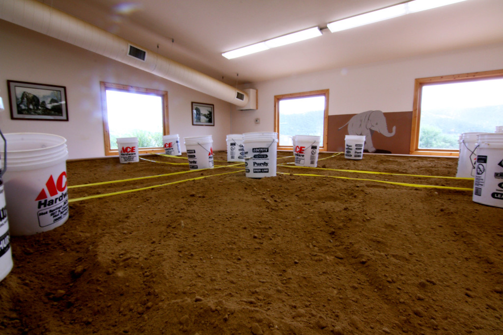 A Jr. Paleontology dig site ready for the next group of young adventurers to discover the world under the dirt.