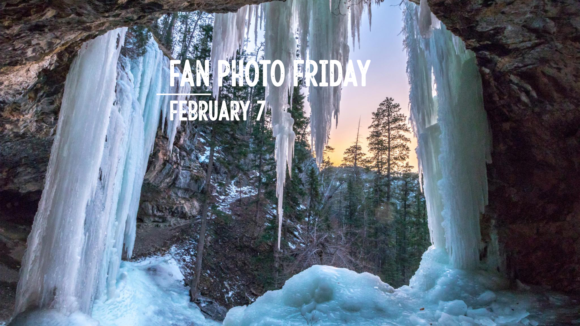 Fan Photo Friday | Feb. 7, 2020