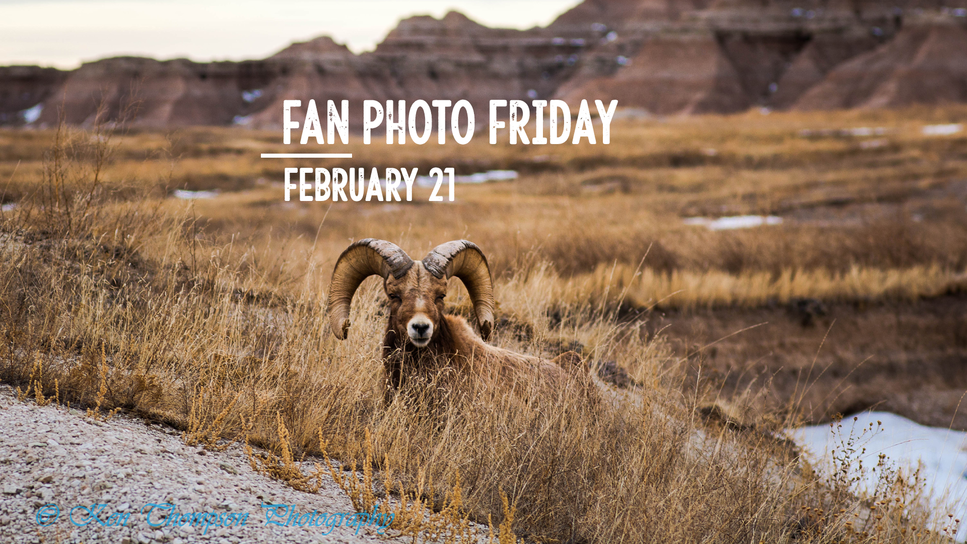 Fan Photo Friday | Feb. 21, 2020