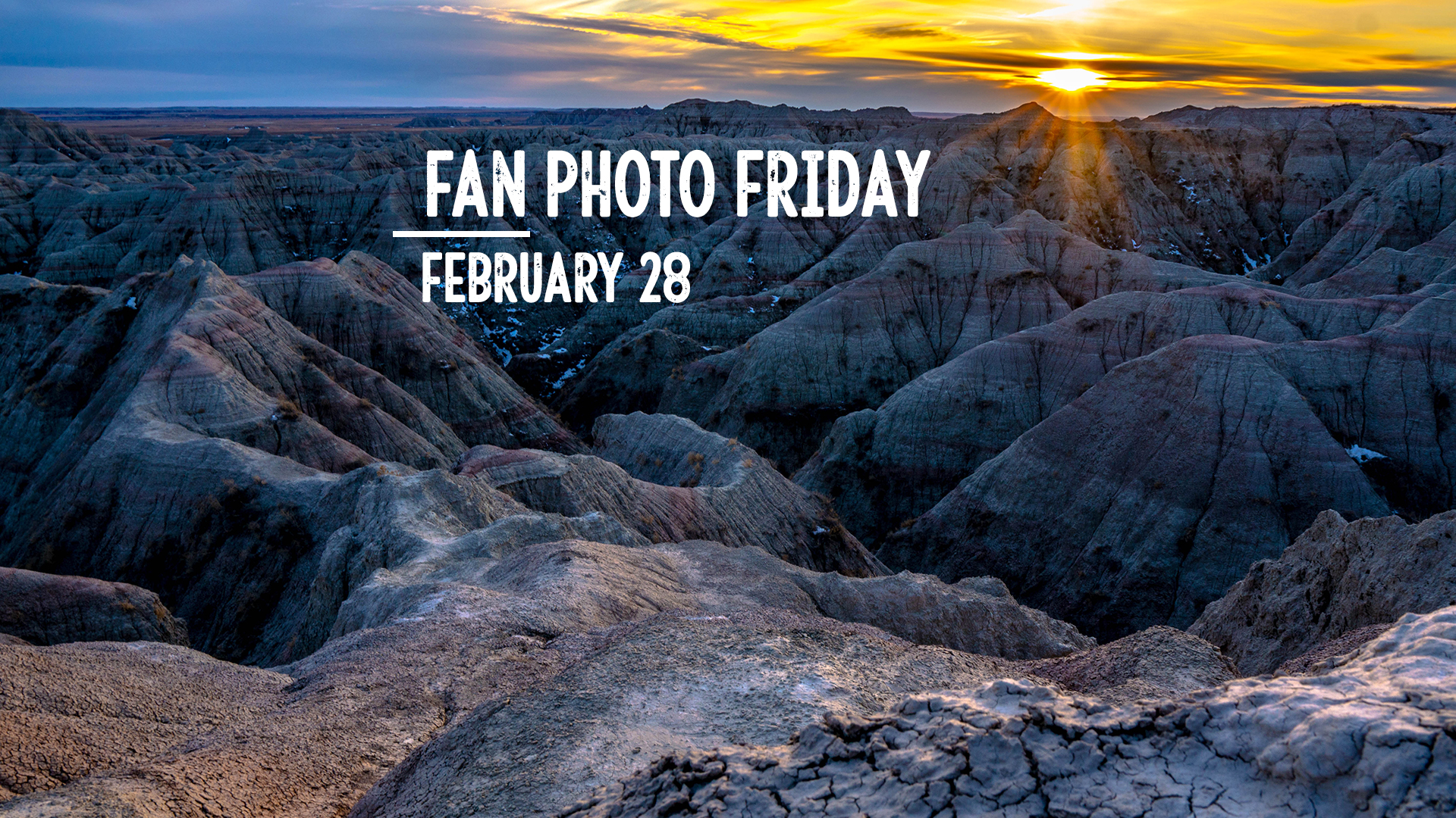 Fan Photo Friday   Feb. 28, 2020