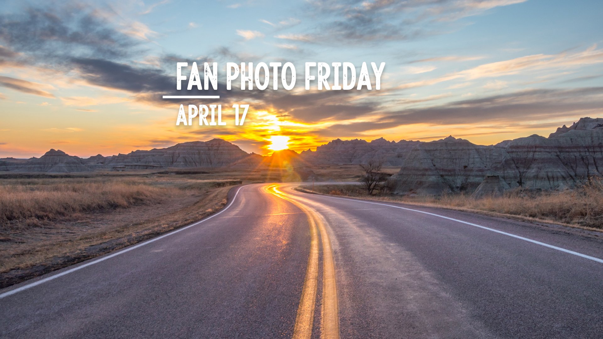 Fan Photo Friday | April 17, 2020
