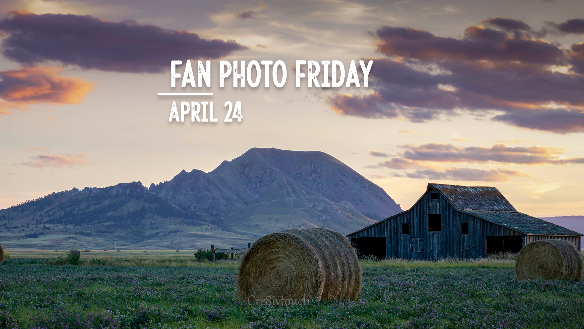 Fan Photo Friday | April 24, 2020