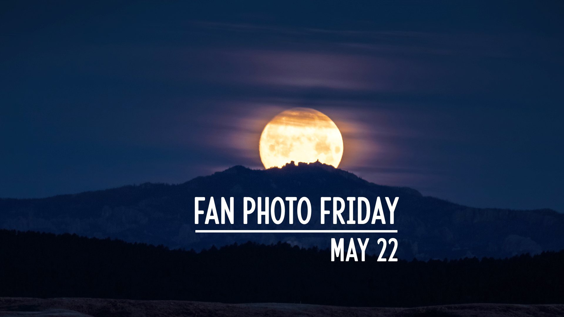 Fan Photo Friday | May 22, 2020