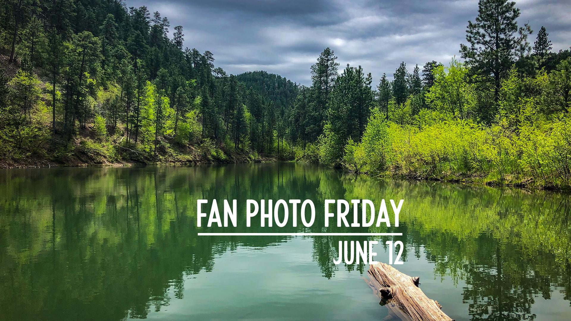 Fan Photo Friday   June 12, 2020