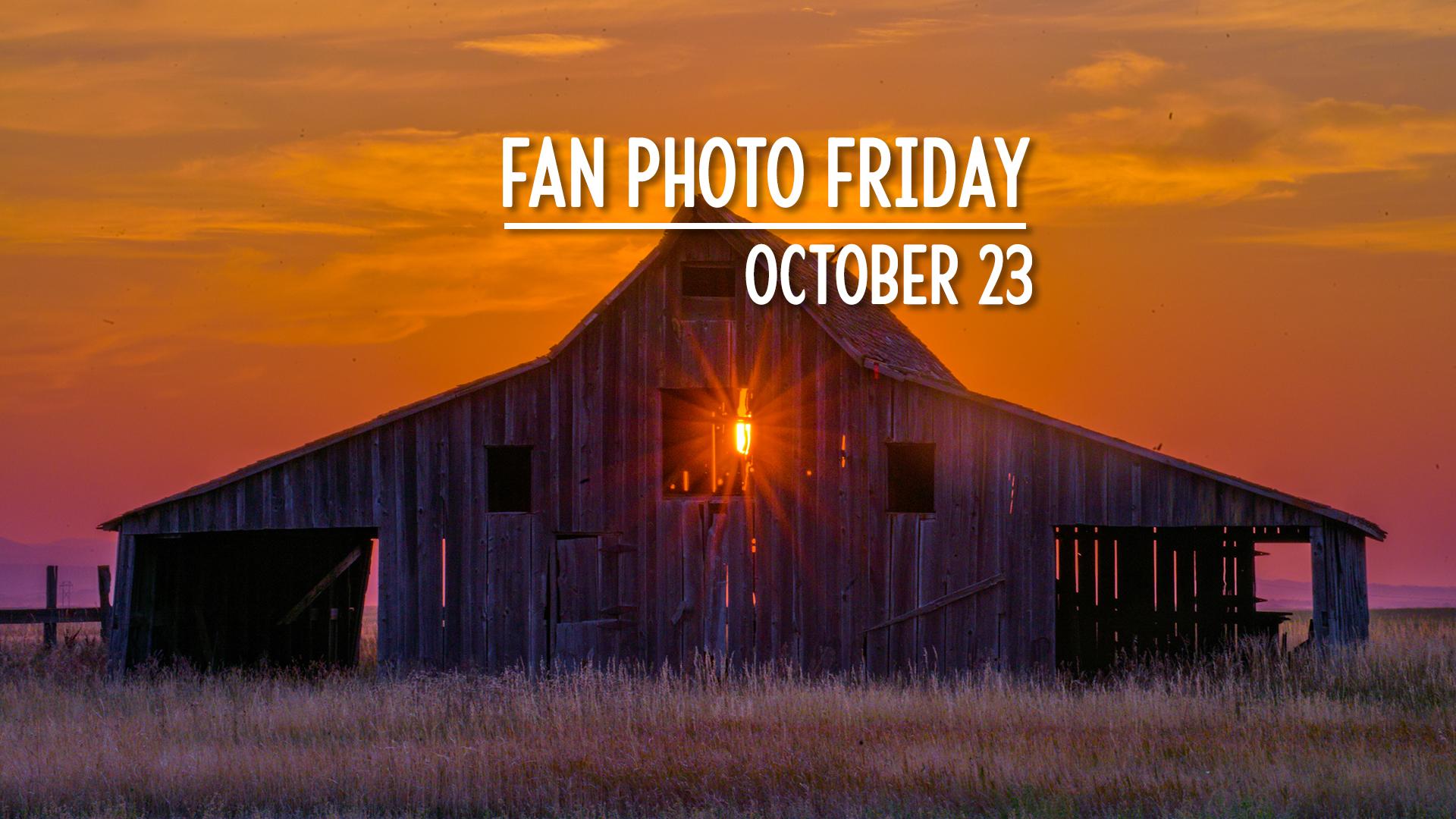 Fan Photo Friday   October 23, 2020