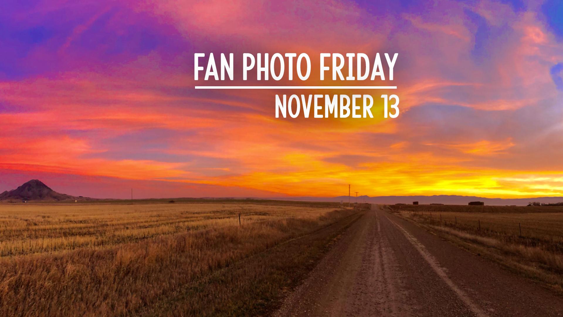 Fan Photo Friday   November 13, 2020