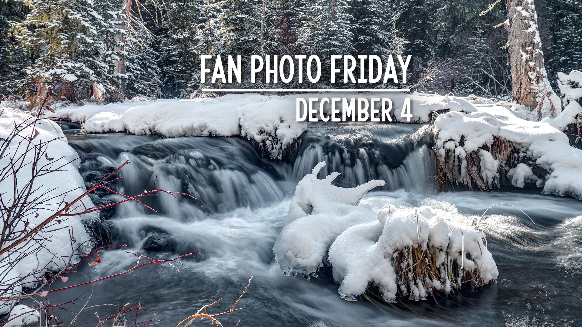 Fan Photo Friday | December 4, 2020