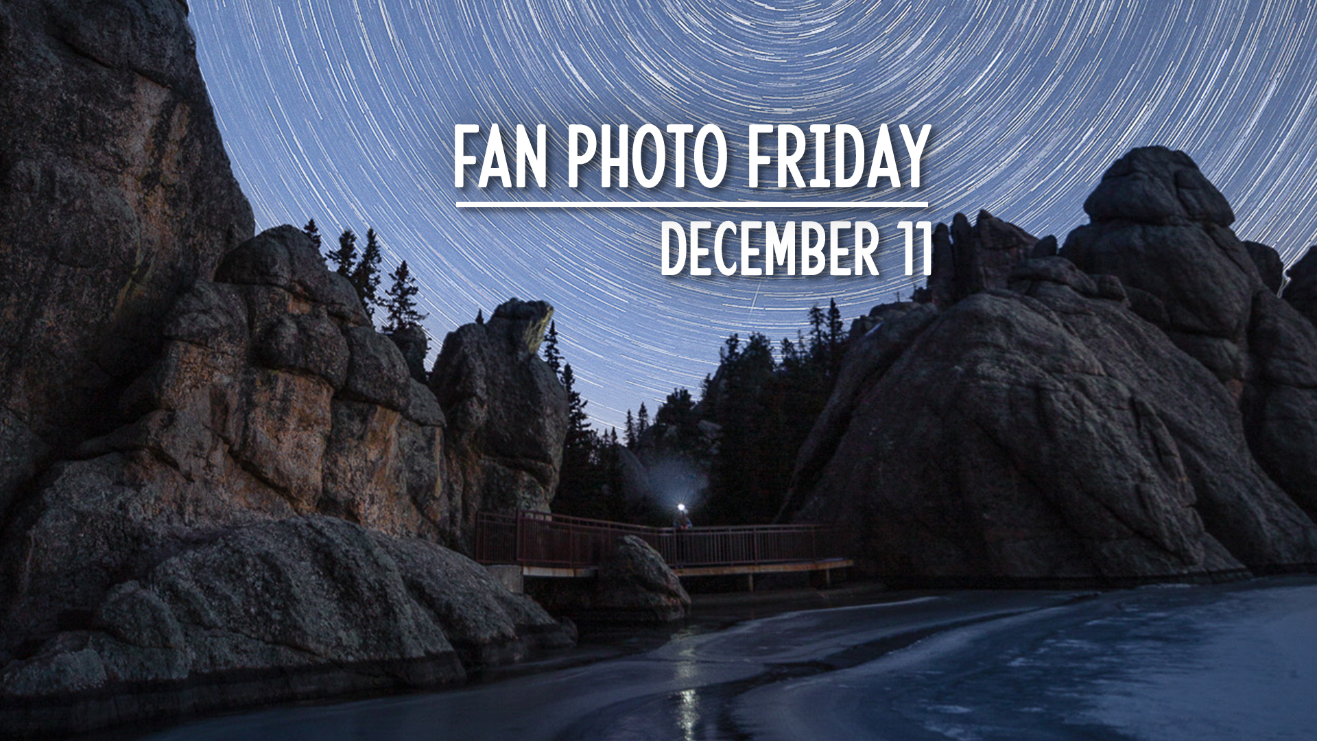 Fan Photo Friday | December 11, 2020