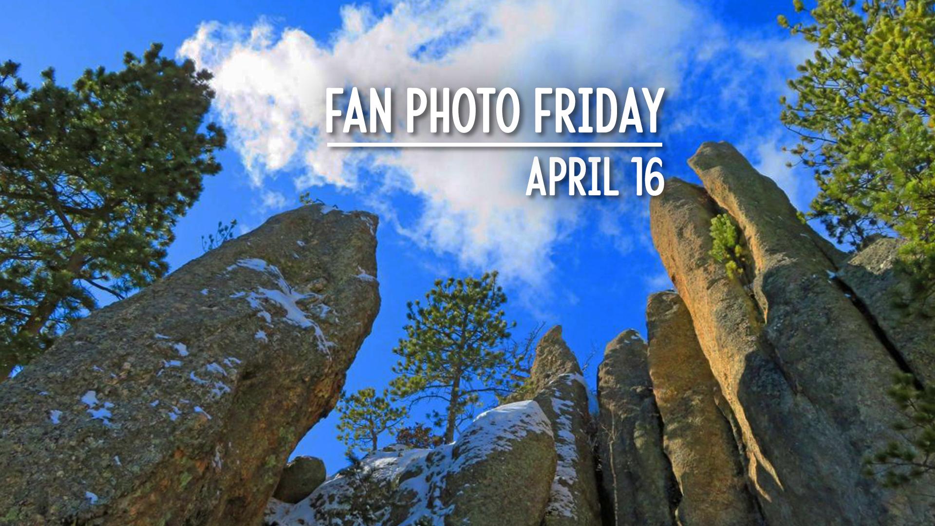 Fan Photo Friday   April 16, 2021