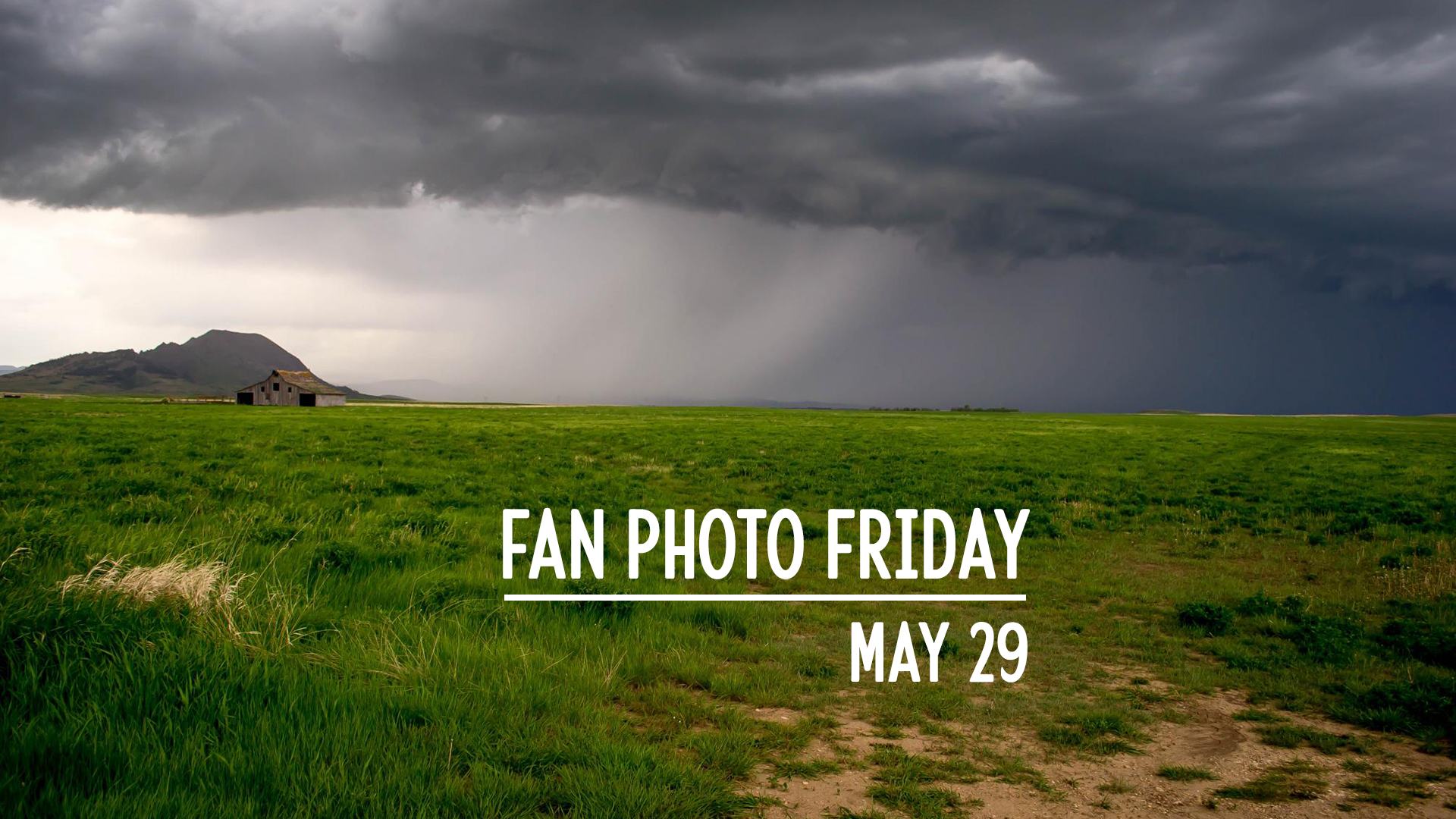 Fan Photo Friday   May 29, 2020