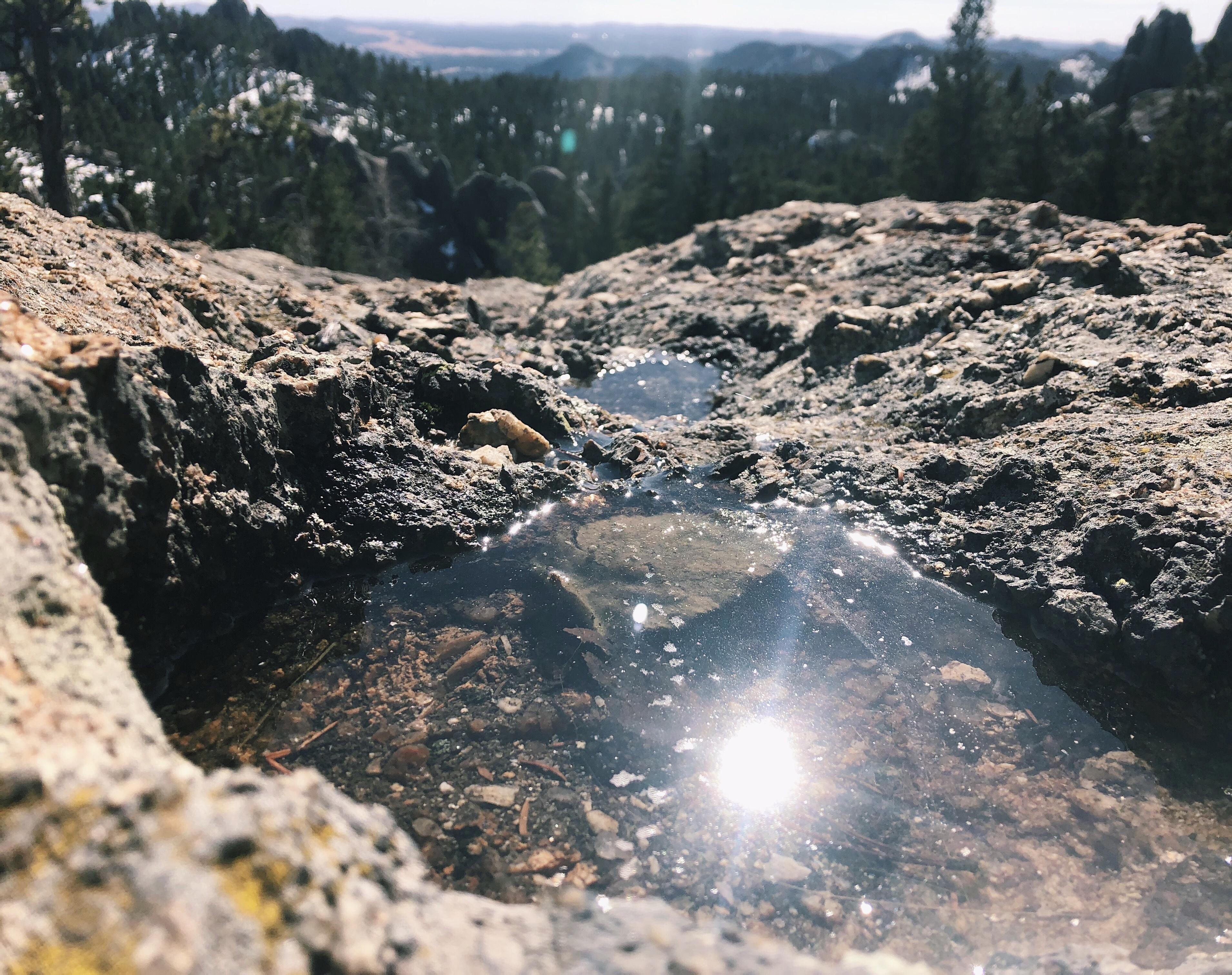 Pools of Sunshine