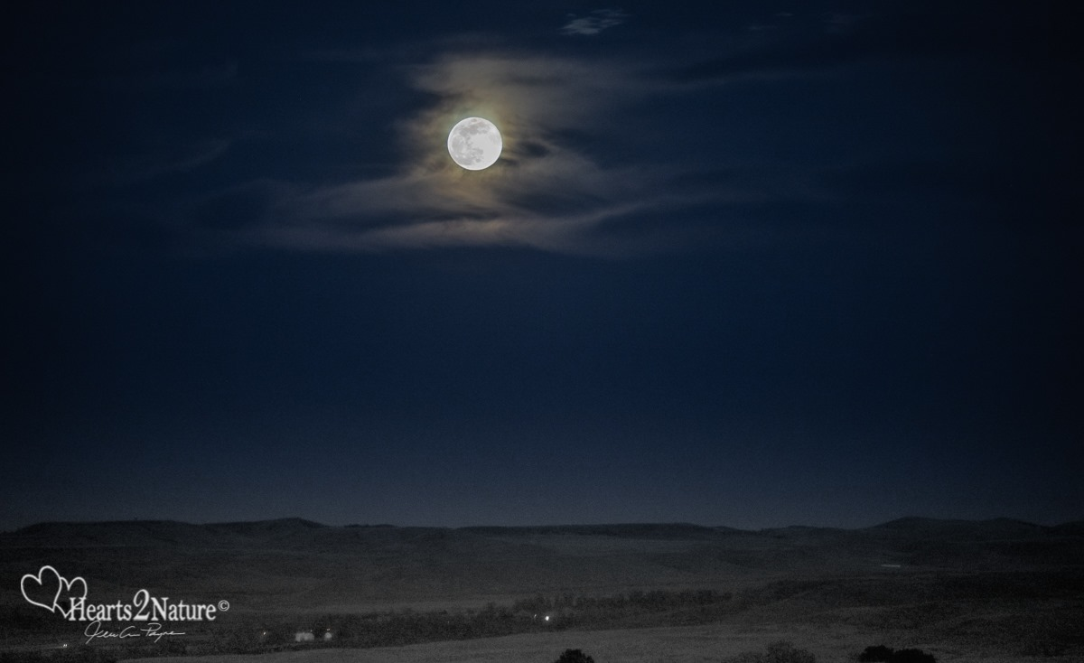 Super Moon Over the Northern Hills