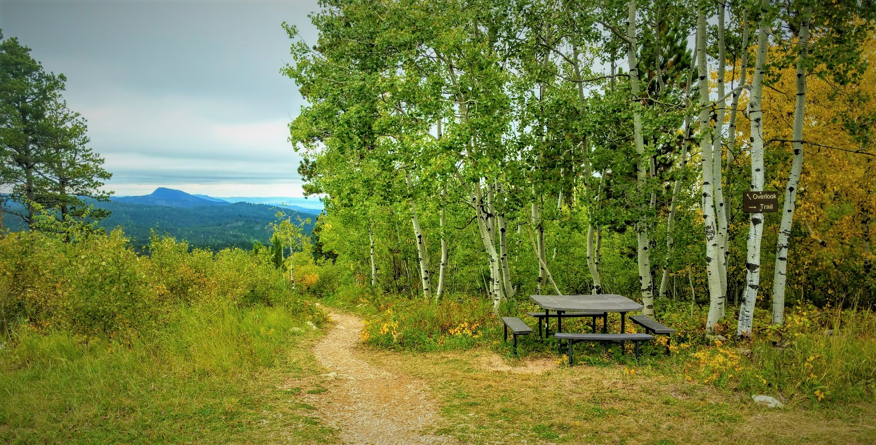 Mount Roosevelt Trail