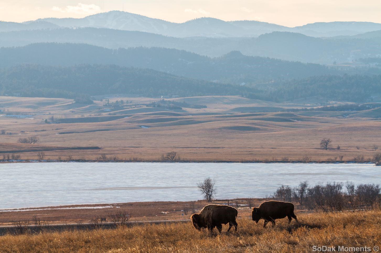 Near Bear Butte Lake