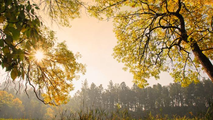 Hit the Trails: 5 Gorgeous Fall Hikes