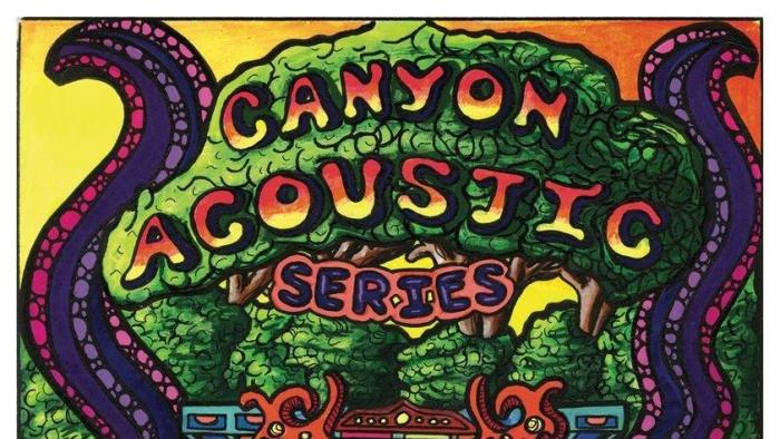 Canyon Acoustic Series