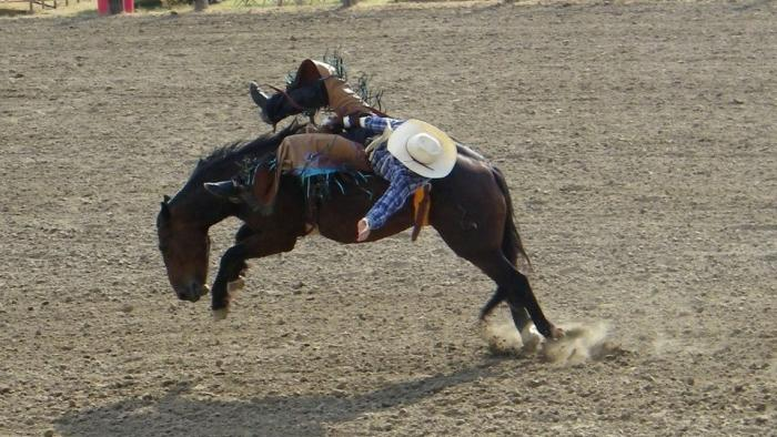 Interior Frontier Days Rodeo