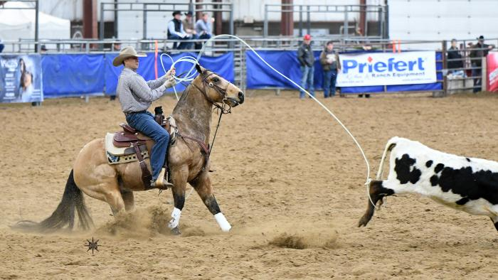Black Hills Stock Show & Rodeo®