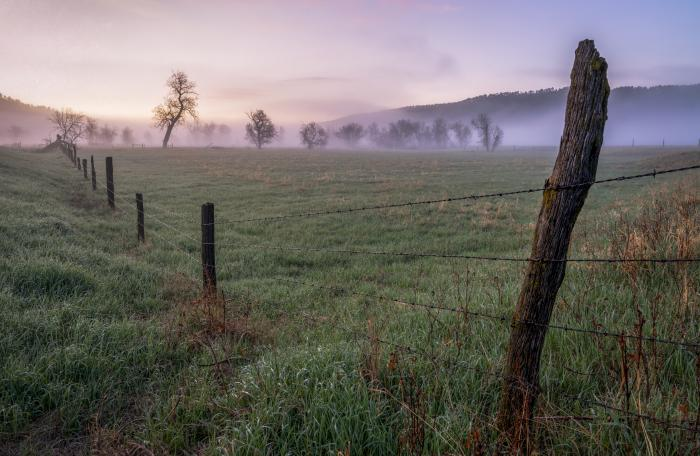 Country Dawn