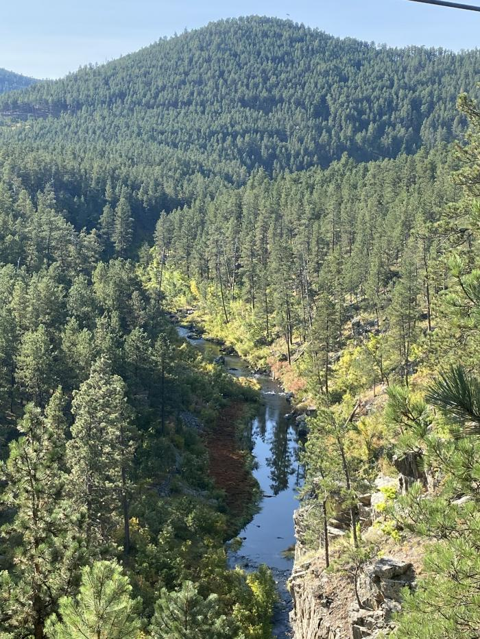 Black Hills Beauty