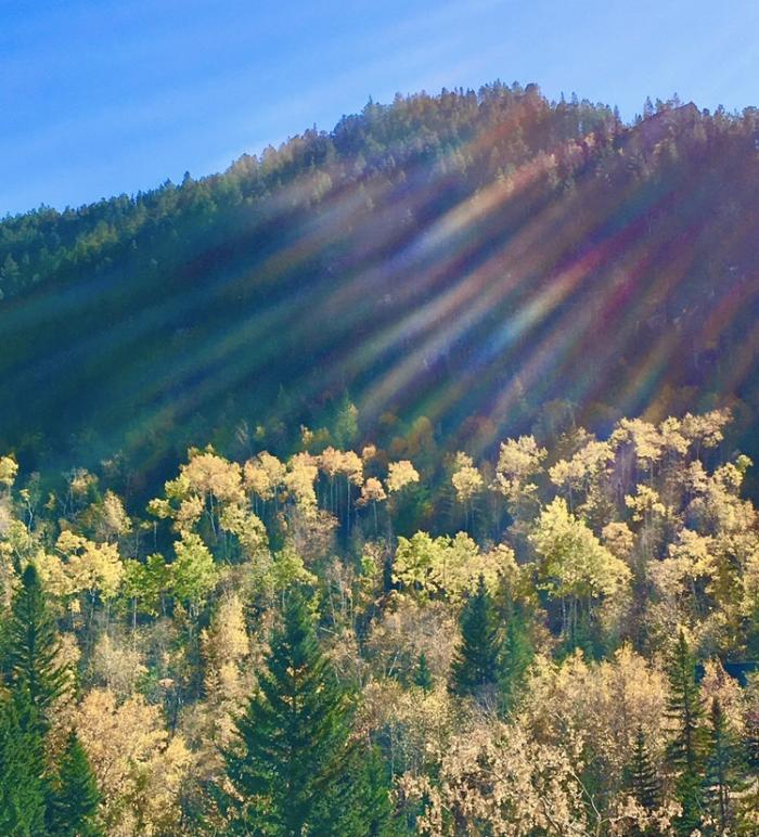 Kaleidoscope of Sunshine