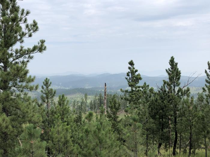 Smokey Hills