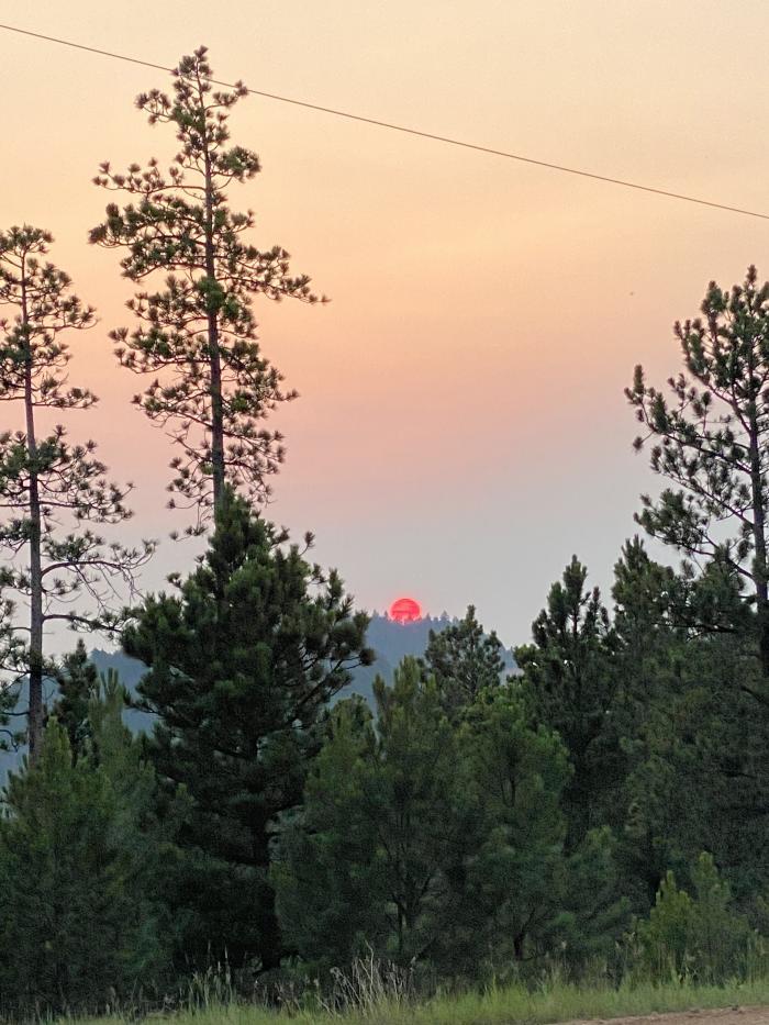 Blazing Sunset in the Black Hills