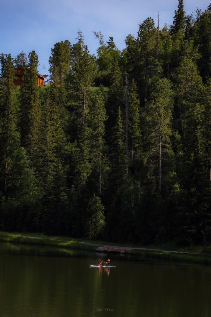 Green Treasure/Sylvan lake
