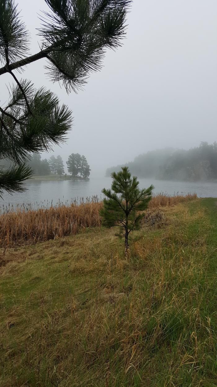 Foggy Day at Stockade Lake