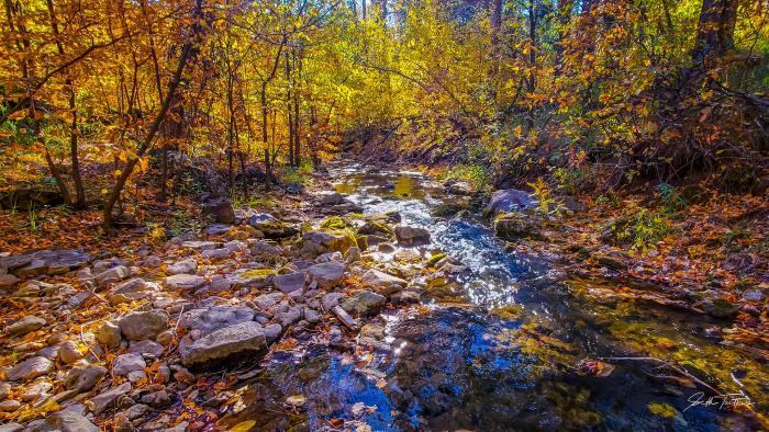 Elk Creek at its Peak