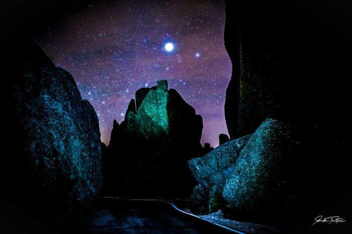 Needles Under the Stars