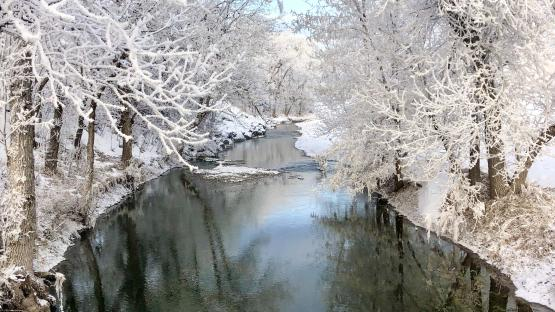 Spring Creek Sunday