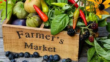 Black Hills Farmers Market