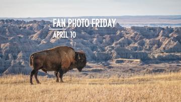 Fan Photo Friday | April 10, 2020