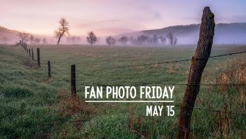 Fan Photo Friday | May 15, 2020