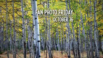 Fan Photo Friday | October 16, 2020