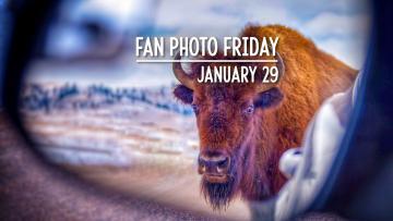 Fan Photo Friday | January 29, 2021