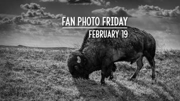 Fan Photo Friday | February 19, 2021
