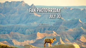 Fan Photo Friday | July 30, 2021
