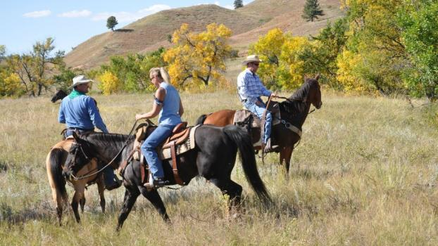 Gunsel Horse Adventures