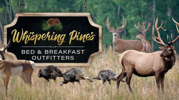 Whispering Pines Bed & Breakfast Outfitters