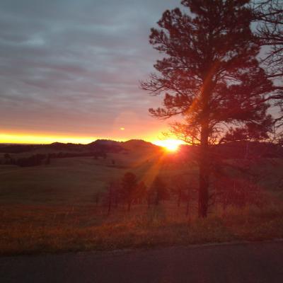 Sunrise in Custer State Park