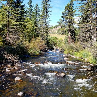 Spring creek trail
